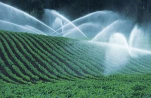 acqua agricoltura