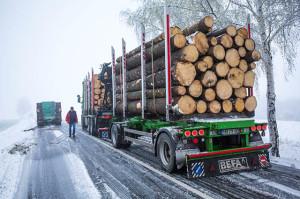 Problemi alla circolazione per via delle intense nevicate in Germania