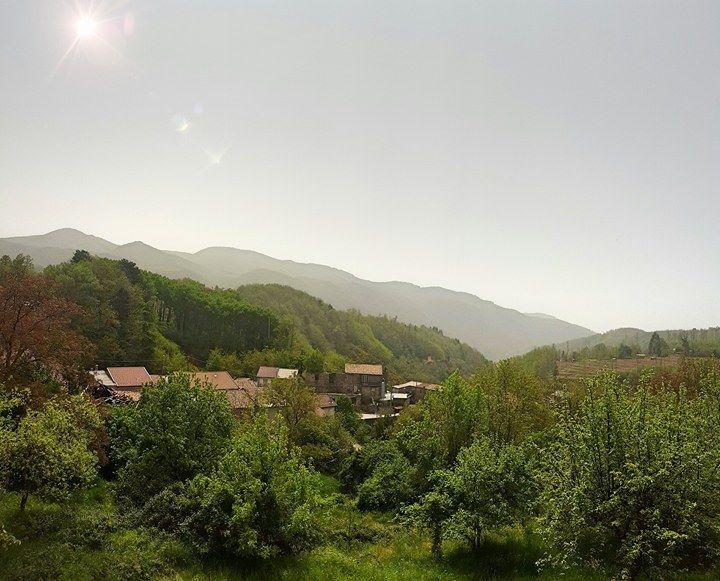 Fotografia scattata in mattinata a Mongiana (VV)