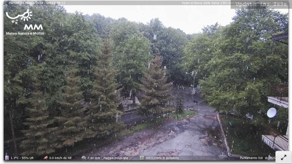 Nevicata in corso, questo pomeriggio, a Bocca della Selva (BN) 1400 mt. Fonte : meteomolise.