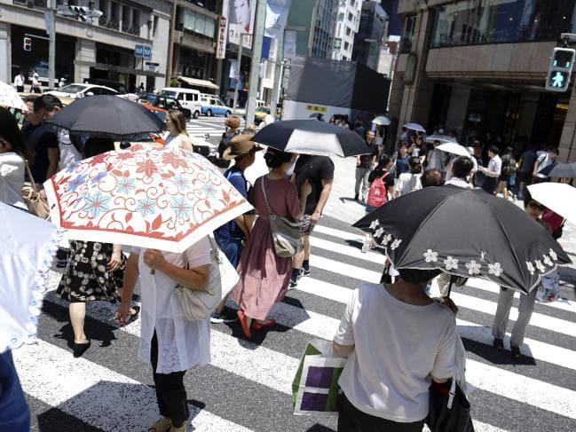 articolo_14_parasole