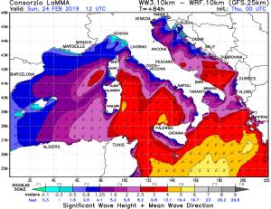Venti in rinforzo nei prossimi giorni: freddo russo e mareggiate protagonisti! - Domenica ancora forti venti e mareggiate. Fonte: lamma