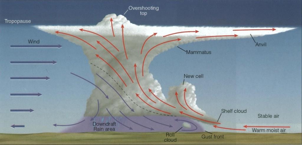 Schema degli elementi presenti nella cella temporalesca. Visibile la shelf cloud in basso a destra.
