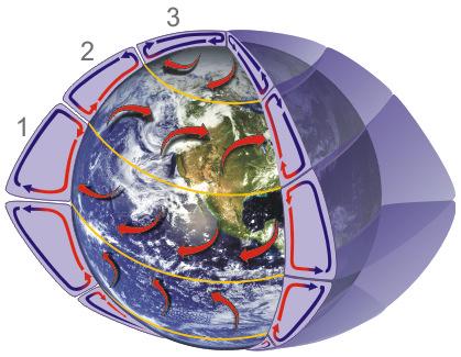 Circolazione generale e cella di Hadley. Fonte: NOAA